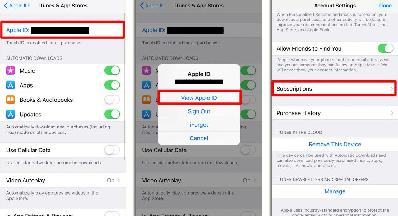 Cómo cancelar la suscripción en tu iPhone
